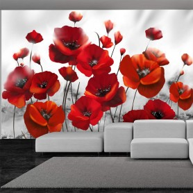 Fototapet - Poppies in the Moonlight