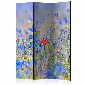 Rumsavdelare - A sky-colored meadow - cornflowers [Room Dividers]