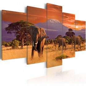 Tavla - Africa: Elephants
