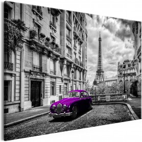 Tavla - Car in Paris (1 Part) Violet Wide
